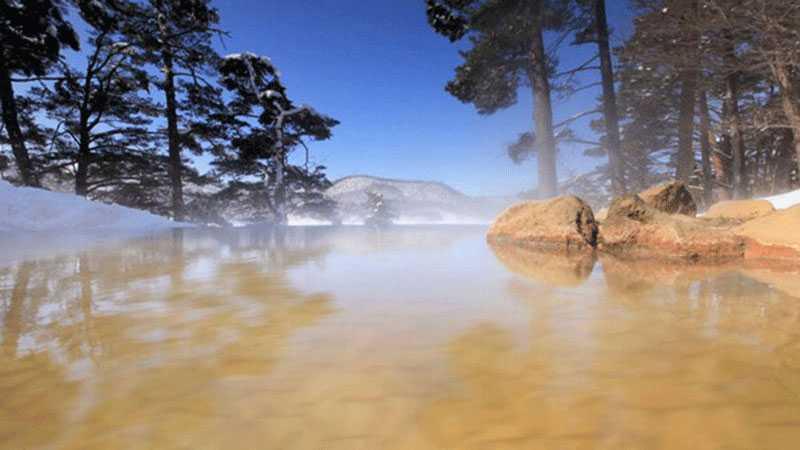 記事720 楽天 裏磐梯レイクリゾート 五色の森