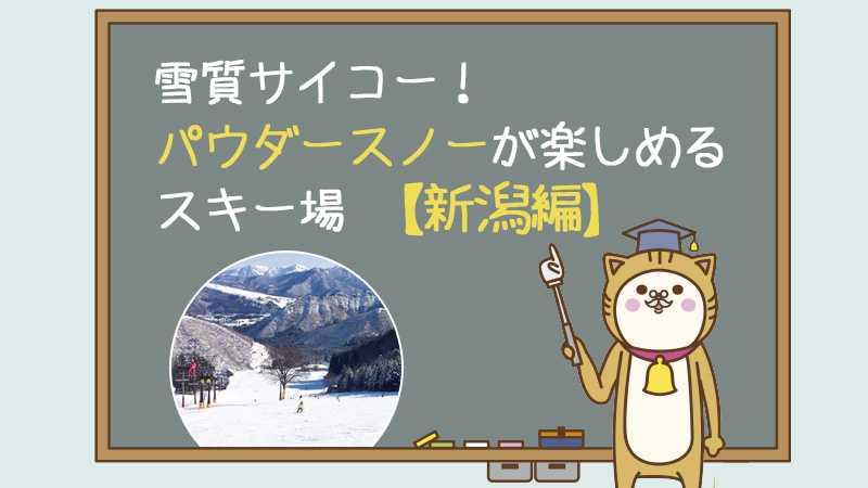 雪質サイコー!パウダースノーが楽しめるスキー場【新潟編】