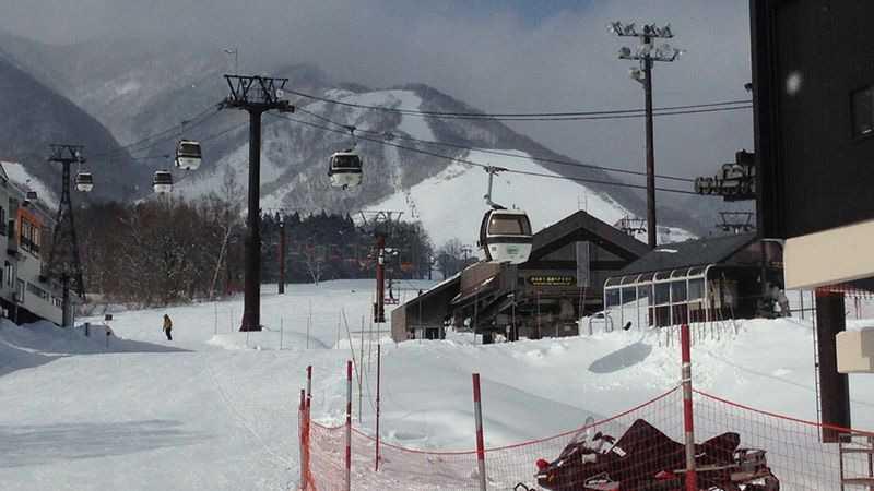 場 高原 栂 池 スキー いけ つが 高原