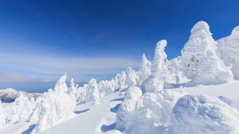 蔵王 樹氷 アイスモンスター